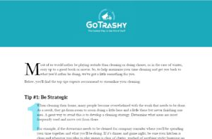 Go Trashy Expert Cleaning Tips
