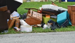 Trash Removal and Pickup Service