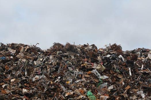 Junk Hauling, Junk Pick Up, Junk Removal, Junk Removal App, Trash Removal, Trash Removal Services, Yard Waste Removal